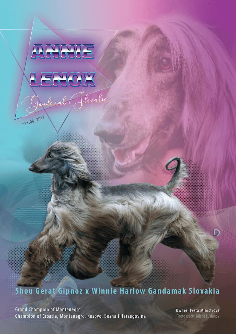 Champion presentation dogdesign