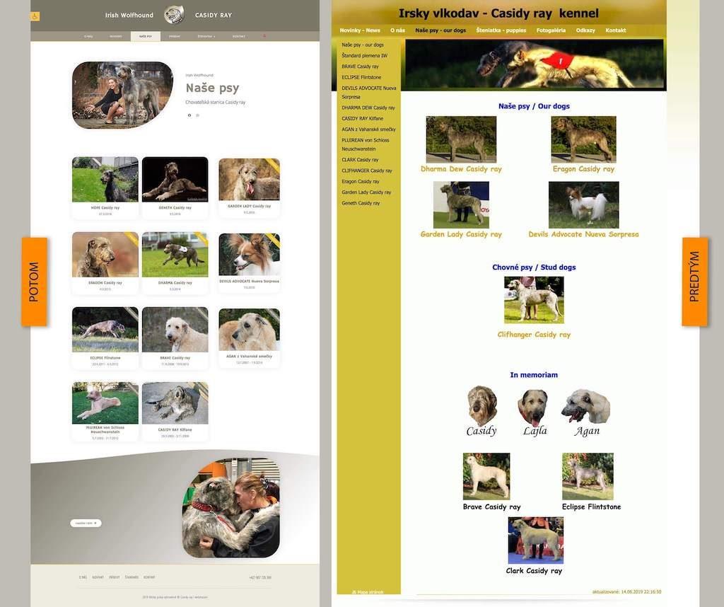 Chovateľská stanica Irish Wolfhound Casidy ray