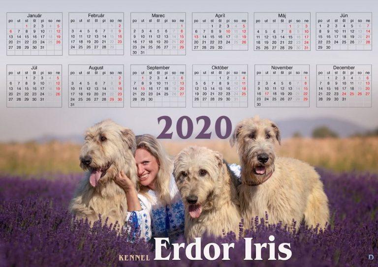Kalendár A4 pozornosť od deadro design