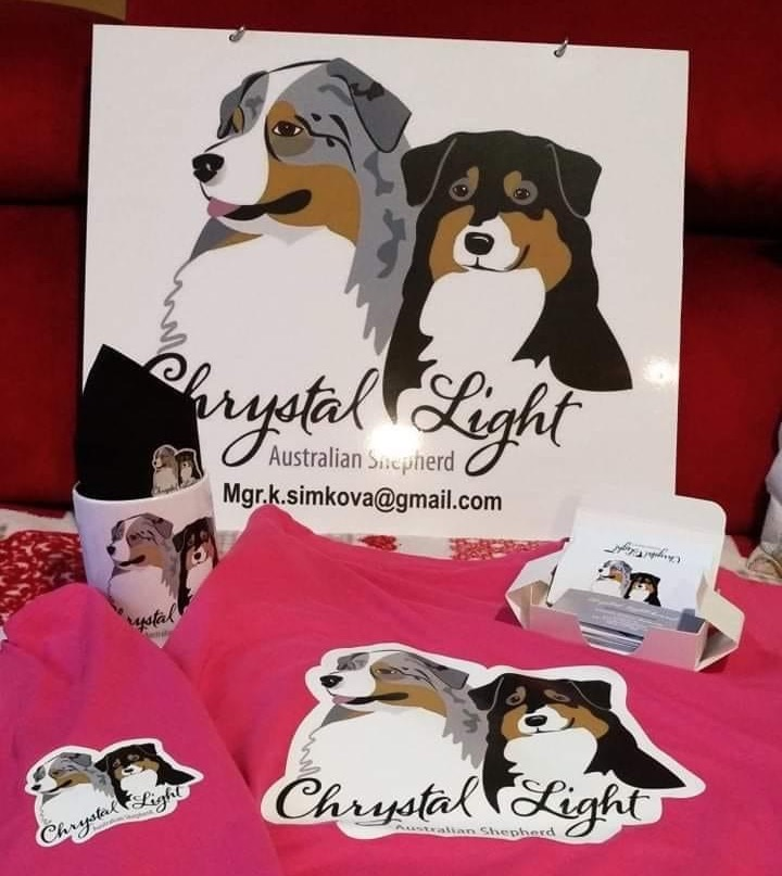 logo CHS Chrystal Light